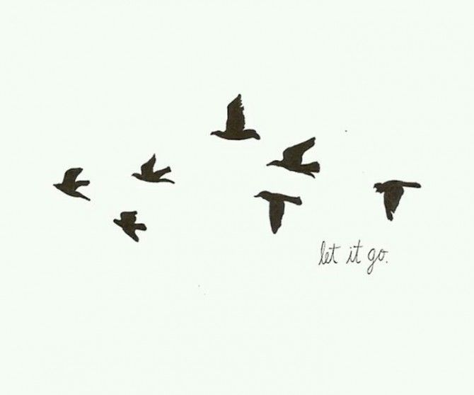 Let it go | be free | freedom | fly | birds | words ...