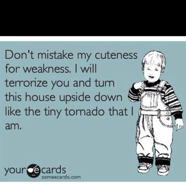 Ahhhh, kids!: My Sons, Quotes, Boys, Funny, So True, Truths, Kids, Toddlers, Tiny Tornados