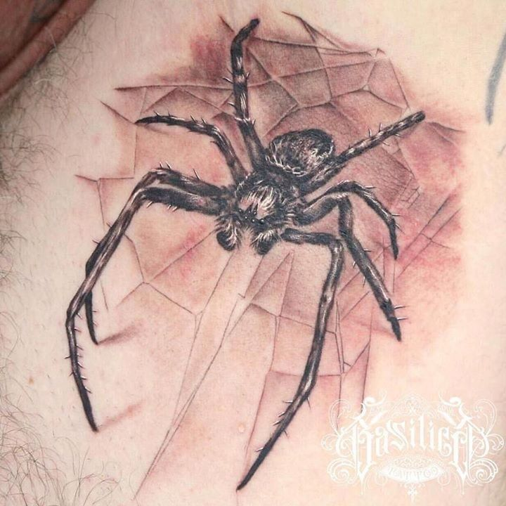 olio.tattoo Spider Armpit Episode Tattoo by @NoelinWheeler from Basilica Tattoo - Las Vegas, NV @NoelinWheeler @SpikeInkMaster! #spider #armpit #episode -- More at: https://olio.tattoo/tattoo-images/mentions:spider