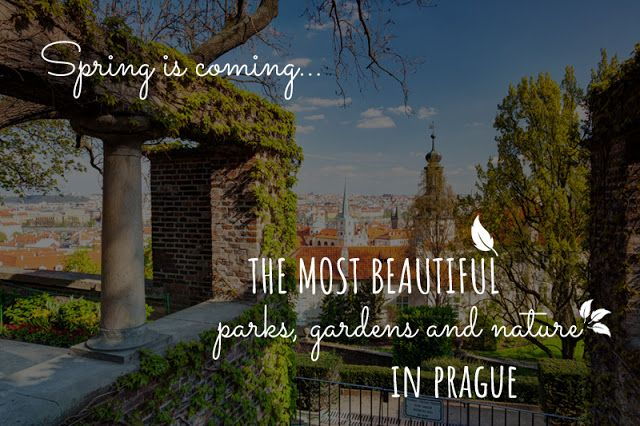 If you are plannig to stay in Prague in spring or summer, you can escape from the crowds and visit one of Prague's beautiful gardens and parks. Whether you choose the ones in the city center or outside Prague, you can be sure that your walk, picnic or morning run will be very relaxing and unforgettable. Let's take a look at Prague's nature!