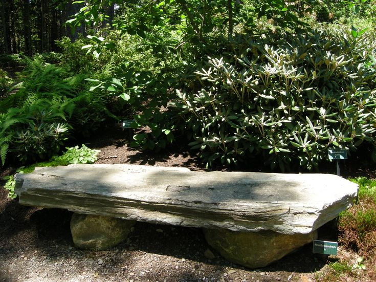 Rustic Stone Bench In A Woodland At The Coastal Maine Botanical Gardens