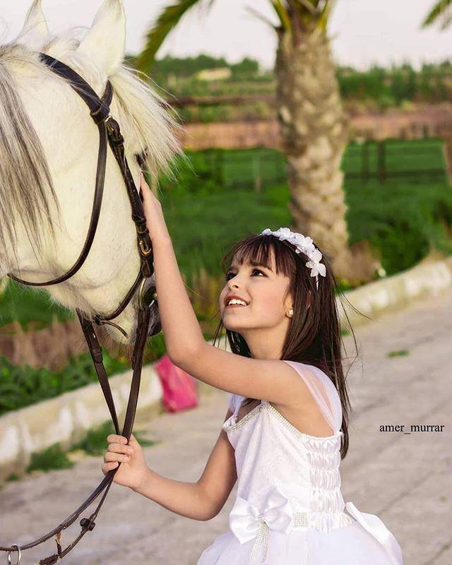 الخيل من خيالها Horses Animals