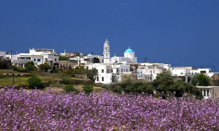 Colors all around us! #Tinos island #VarietyCruises Photo on beyondspacesvillas