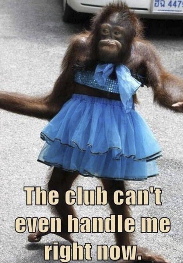 I do not go clubbing, but it's still cute :)