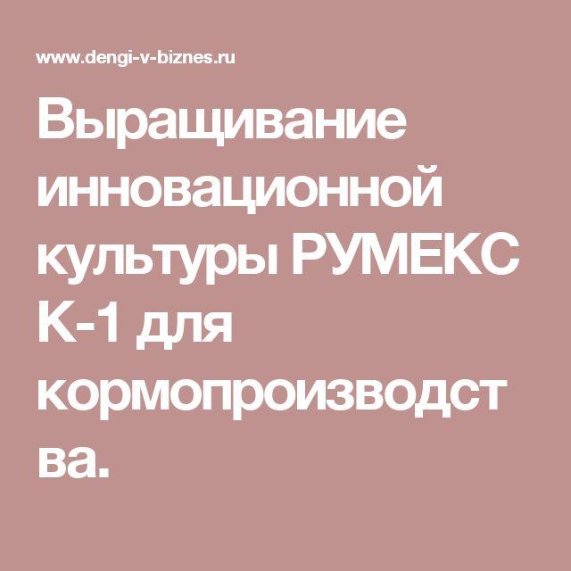 Выращивание инновационной культуры РУМЕКС К-1 для  кормопроизводства.