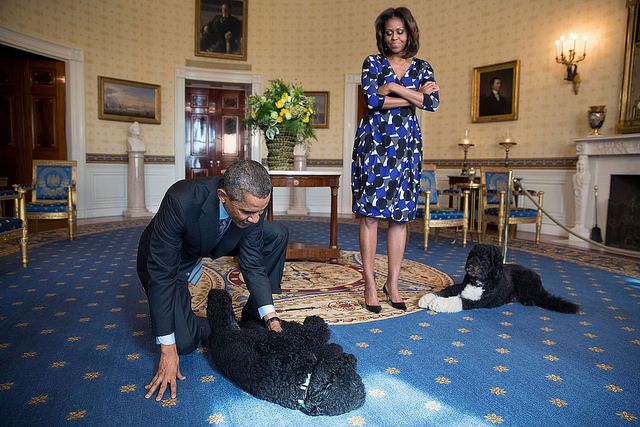 President Barack Obama and First Lady Michelle Obama, joined by family pets Sunny and Bo, wait to greet visitors in the Blue Room during a White House tour, Nov. 5, 2013.