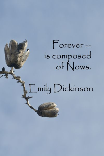 """""""Forever – is composed of Nows."""" – Emily Dickinson – On Southwest image by Florence McGinn -- Explore tips and quotes on writing inspiration at http://www.examiner.com/article/writing-inspiration-from-water-and-nature-tips-and-quotes"""