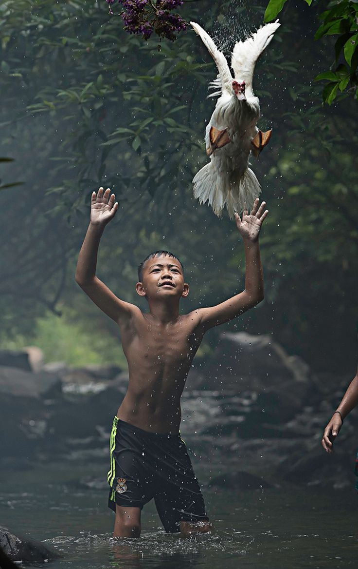 Catching a Duck, por Sarah Wouters