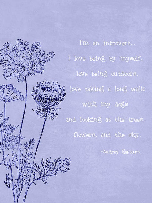 #introvert #quote #quotes #audrey #hepburn #alone #nature #dogs #dog #trees #outdoors #flowers #quiet
