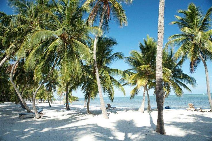 "The Moorings Village and Spa Beach Rd Islamorada FL...where""Bloodline"" is filmed!"