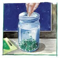 Germoir maison Un grand bocal, un carré de mousseline ou une compresse de gaze un élastique.Mettez deux cuillères à soupe de graines dans le bocal, recouvrez d'eau. Laissez-les tremper entre 4 et 24 heures selon les graines :Recouvrez d'eau les graines pour les faire germer. ©D. Klecka Recouvrez le bocal avec le carré de mousseline ou de gaze, en le fixant avec l'élastique.