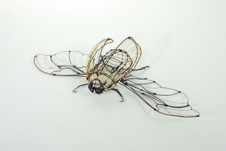 wire sculpture | Ivy+Hu+Wire+Bug (image)