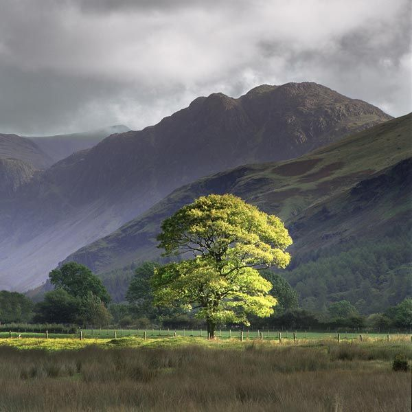 I'm pretty much in love with anything by Charlie Waite. // Buttermere, Cumbria, England. Photo by Charlie Waite.