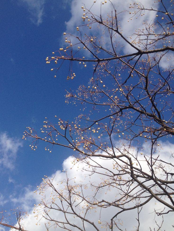 福山市から2014.3.10