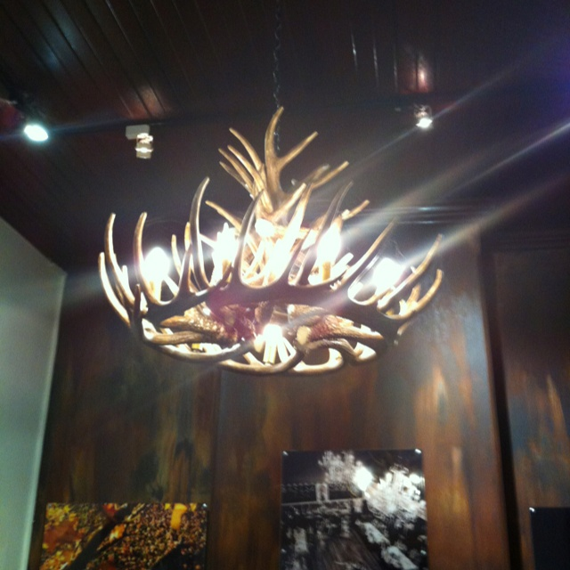 131 best indoors chandeliers and ideas images on pinterest gorgeous stag horn chandelier aloadofball Choice Image