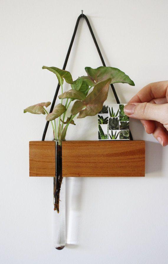 hanging vase hanging frame photo frame picture