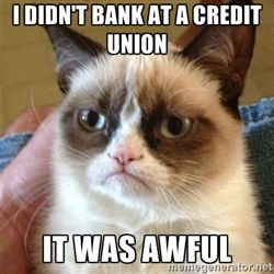 I didn't bank at a credit union. It was awful. - Grumpy Cat #creditunions #peoplehelpingpeople