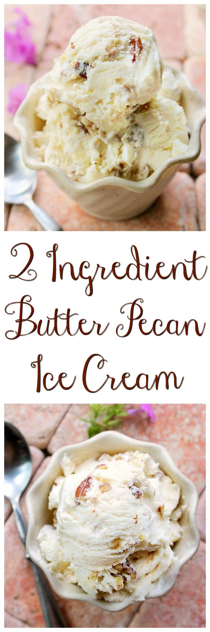 Smooth, creamy and rich describes this 2 Ingredient Ice Cream Recipe