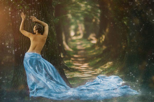 #photo #foceni #kratkevlasy #shorthair #art #umeni #les #forest #pohadka #fairytale #fairy