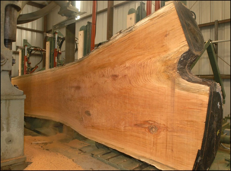 Cherry log being cut into slabs: http://hearnehardwoods ...