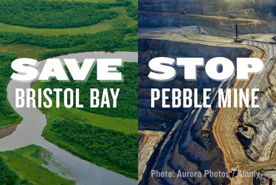 EPA just struck a backroom deal with the mining industry that paves the way for the disastrous Pebble Mine. Sign the petition to stop this gold and copper mine and save Alaska's Bristol Bay.