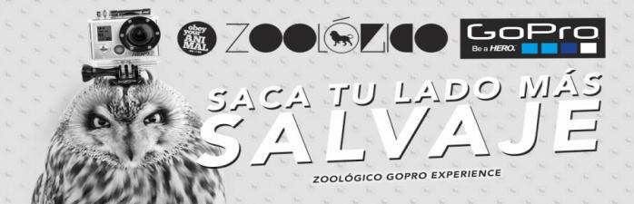 Discoteca Marco Aldany - Zoologico 8 de junio - tuplanc.com