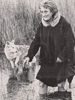 "The ""Lady of the Swamp"" - the eccentric Margaret Clement with her beloved dog Dingo just before she disappeared without trace in 1952. This mystery has never been solved, but one of Charlie Heard's 1930 taxi passengers was front and centre of it. oz.Typewriter: From the World's Longest Cab Ride to the Lady of the Swamp Mystery: How NOT to Write a Good Story"