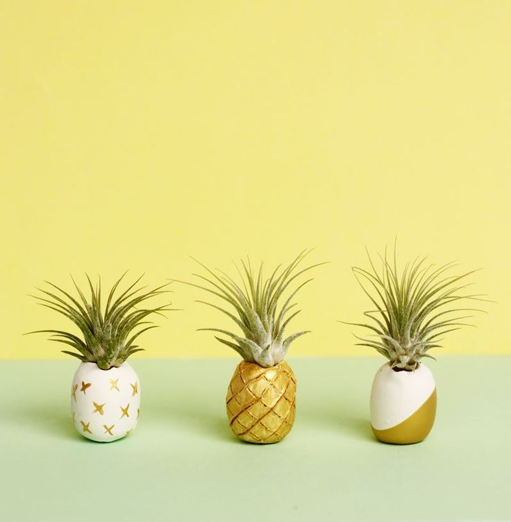 Make these easy and adorable pineapple air plant holders with clay and paint!