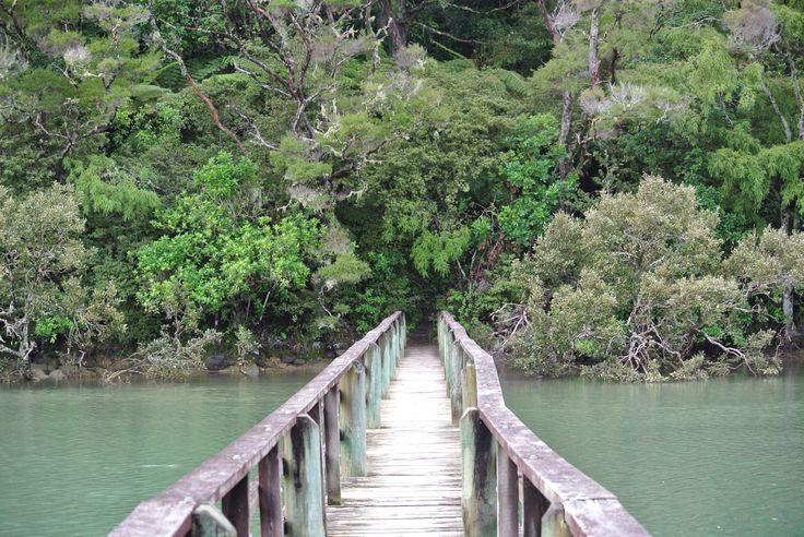 The bridge!  Paihia, New Zealand