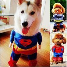 Куртка для собаки бэтмен