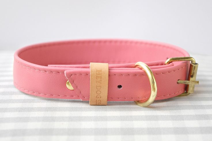 Hey Dog Coral collar