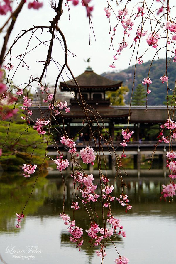 Garden of the Heian-Shrine by LunaFeles.deviantart.com on @deviantART