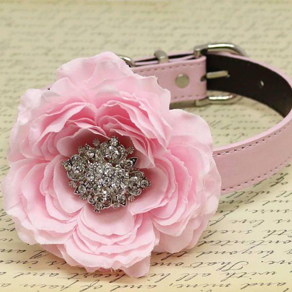 Champagne flower dog collar handmade girl dog collar beaded dog collar dog of honor