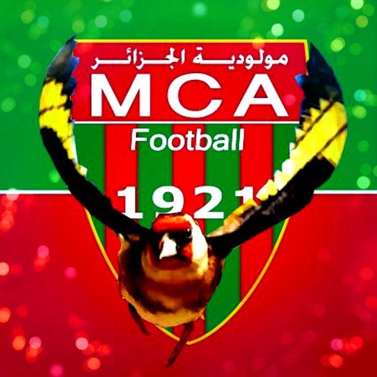 Bonne chance aux deux équipes Mouloudia d'Alger MCA et Union sportive de médina d'Alger USMA le match aura lieu au stade 5 juillet Alger de : Bilel Kios #الحسون #المقنين #القرديل #سهره #Chardonnerert #Canari #Mulet #MuletOiseau #Oiseau #Birds #Animaux #Goldfich #Jilguero #Cardellino #καρδερίνα #Sakakuşu #Chien #Chat #Pigeon #Cheval #Science #Reptile #Poisson #Plantes #Hibiscus #Alger #Algérie #Tunisie #Maroc #ChardonneretGolden