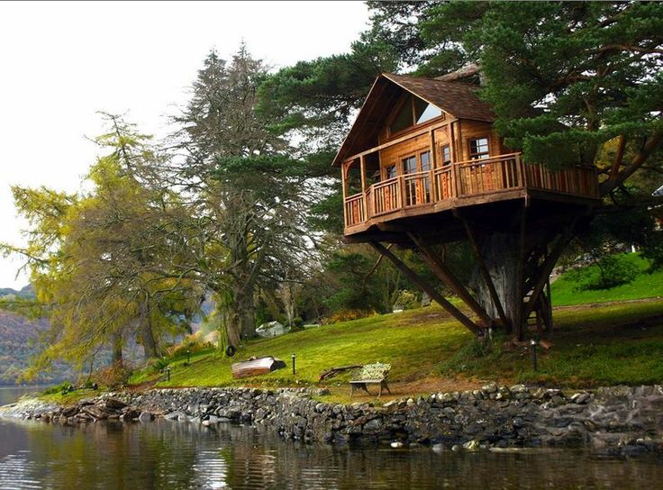 Really Cool Tree Houses 19 best tree houses images on pinterest | treehouses, landscapes