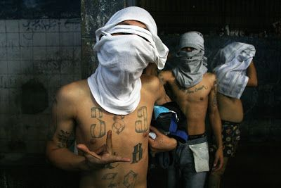 Borderland Beat: MS-13 Recruited by the Sinaloa Cartel