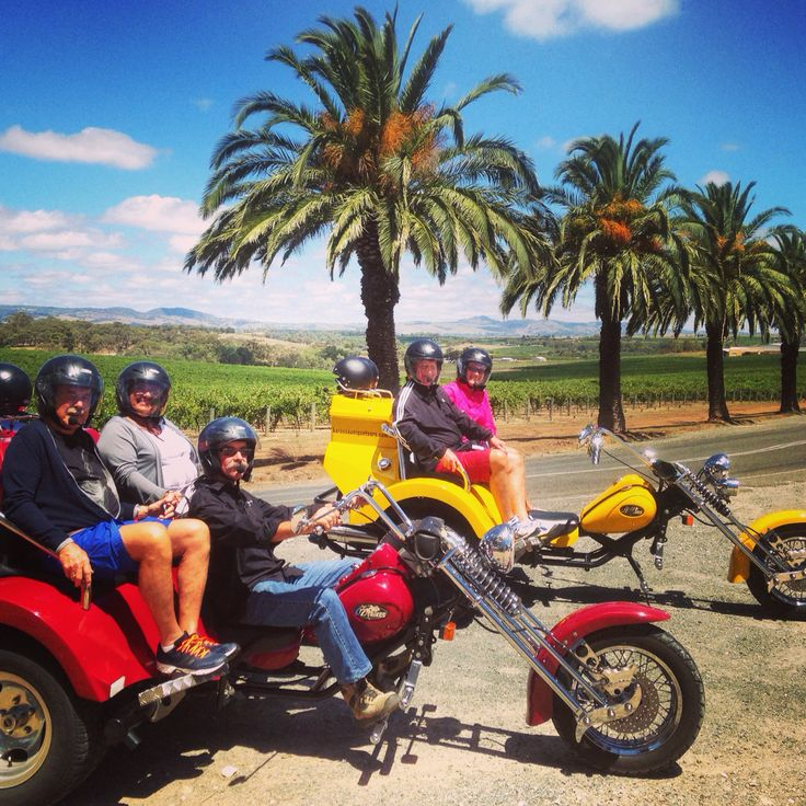 Cruising through Barossa's date palm avenue with some very amusing and fun Norwegian's.