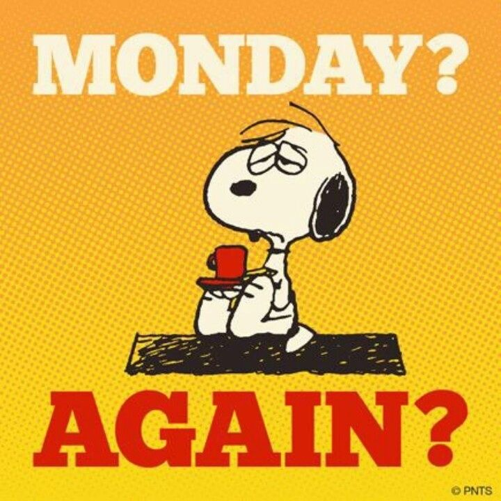 Monday? Again? Time to start this day