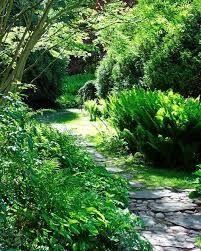 engelska trädgårdar - Sök på Google