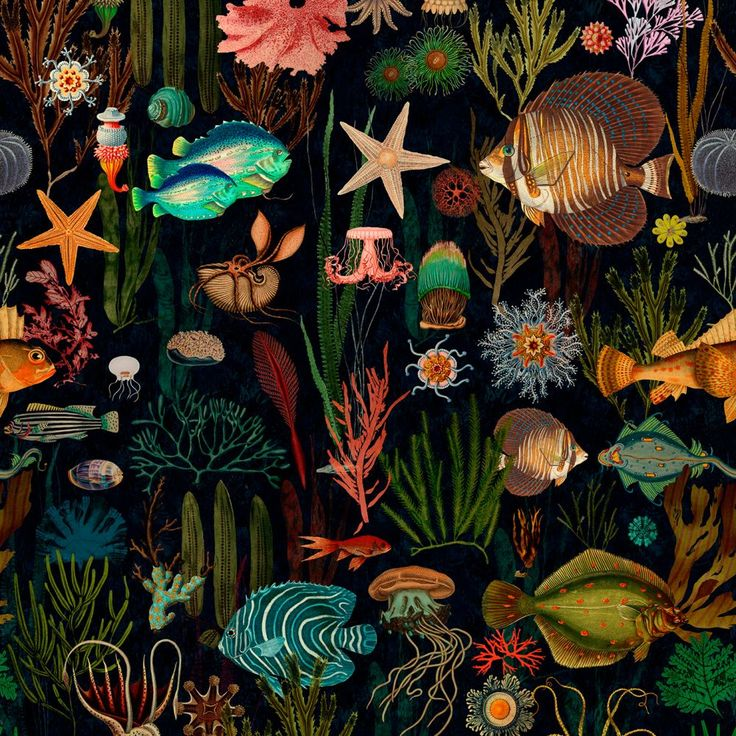 Oceania Wallpaper from Mind The Gap Designer wallpaper