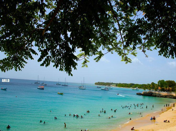 Little Trinidad &Tobago