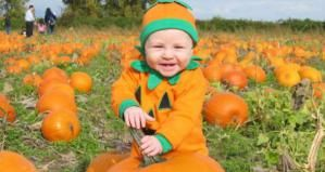 vancouver halloween events attractions Richmond Country Farm - Image Courtesy of Richmond Country Farm