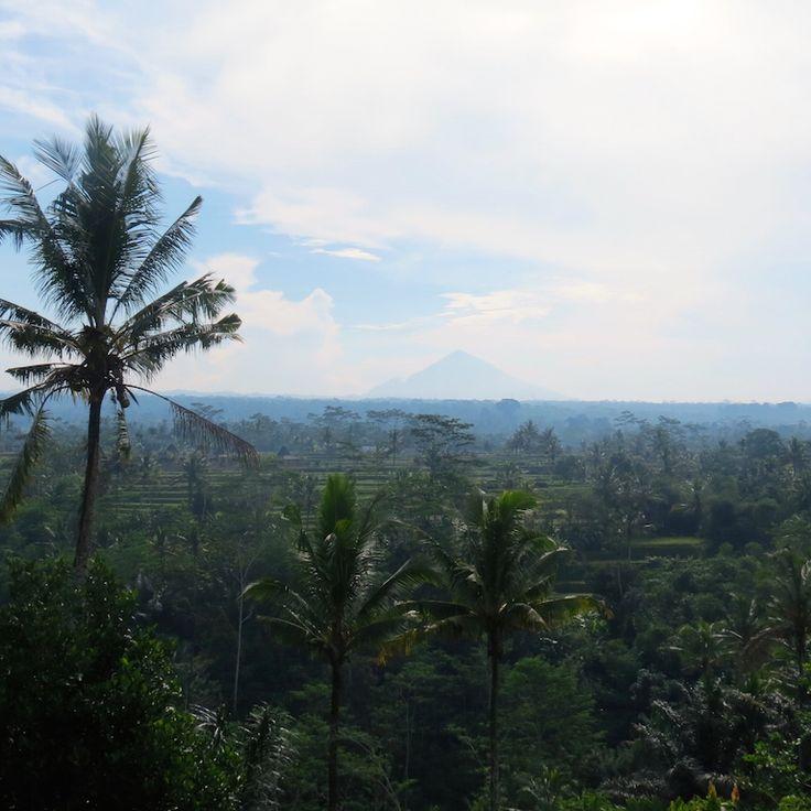 #Bali #Indonesia #Indonesien #Asia #Asien #Reisen #mountain #jungle #Vulkan #Dschungel #Urwald