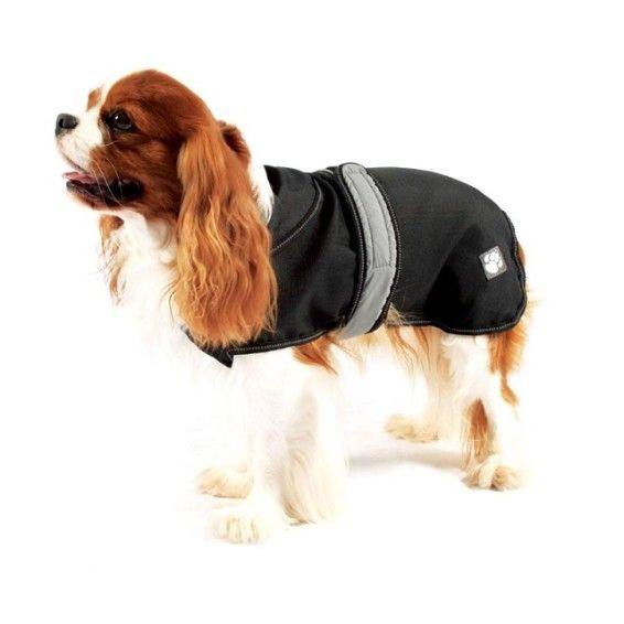 2 in 1 Waterproof Dog Coat