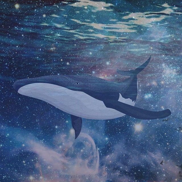 고래 그리는거 너무 어렵다 #일러스트 #그림 #일러스타그램 #고래 #illust #Illustration #illustagram #drawing #doodle #digitalart #dailyart #portrait #instart #fineart #art #artwork #artstagram #whale #bluewhale #y_penguin