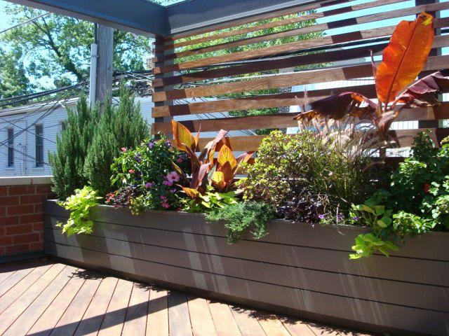 Roof Deck | Pergola | Urban | Garden | Landscape | Design | Planters | Ipe Screening