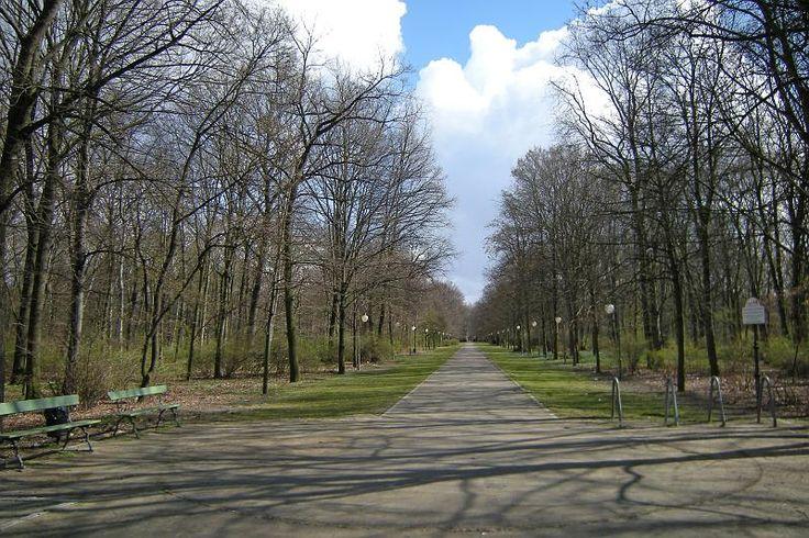 Tiergarten, Grosse Stern Allee