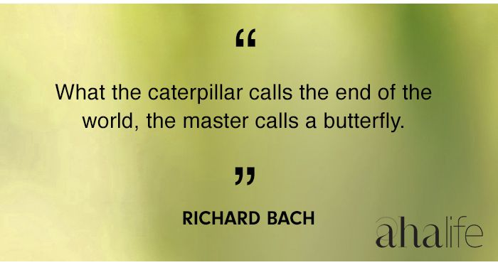 What the caterpillar calls the end ...
