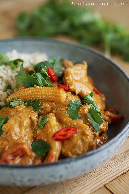 Medaillons in romige rode pindakaas curry - Plantaardige, vegan, veganistische en vegetarische recepten voor dierenwelzijn, je gezondheid, het milieu én wereldvoedselverdeling. D Rozeboom