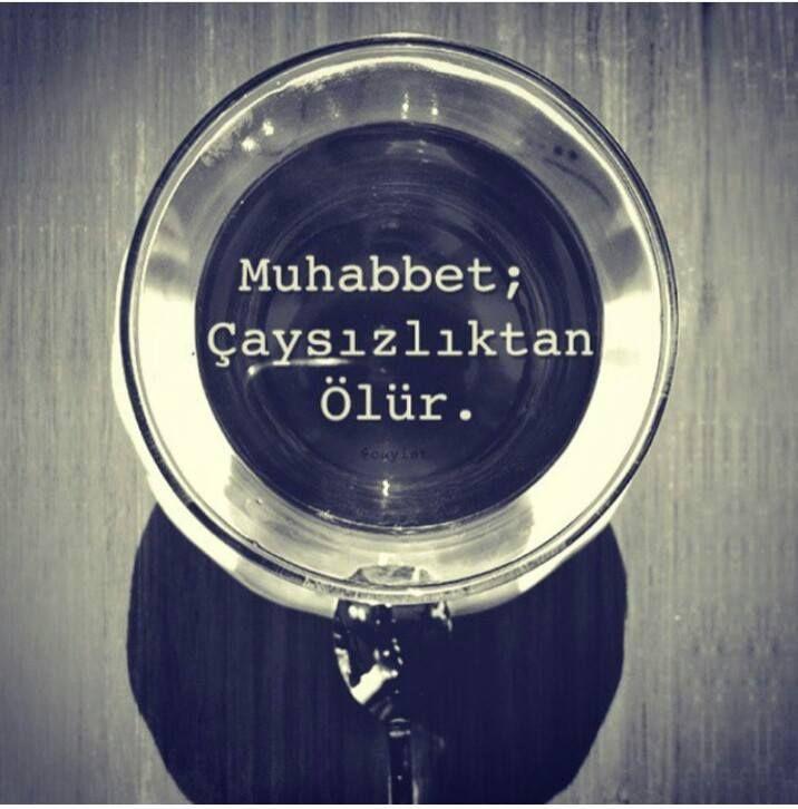 Muhabbet; Çaysızlıkdan ölür. #sözler #anlamlısözler #güzelsözler #manalısözler #özlüsözler #alıntı #alıntılar #alıntıdır #alıntısözler #cay #çay